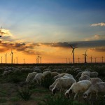 South Africa dramatically raises wind ambitions